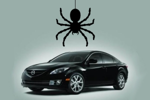 wandering_spiders_lead_mazda_to_recall_65000_cars