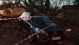A Greenwich Park tree crashes into car