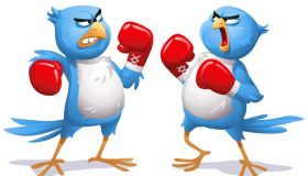 Two Angry Blue Birds Boxing